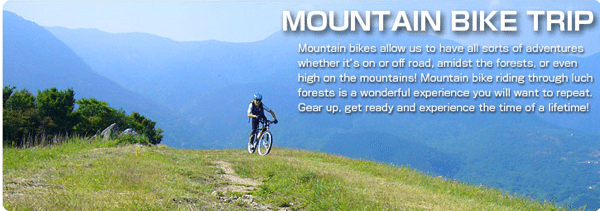 Mountain Bike tours Let's ride! Let's ride! aloha bike trip mtb